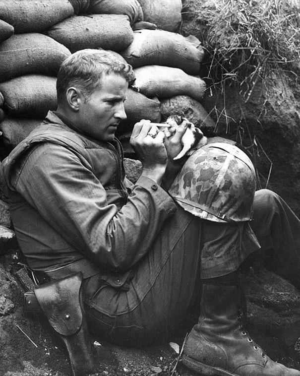 Sõdur ja kassipoeg