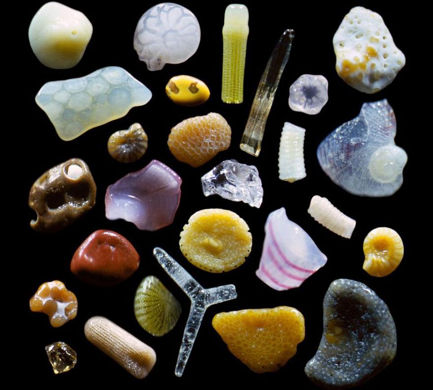 Liiv mikroskoobi all 1