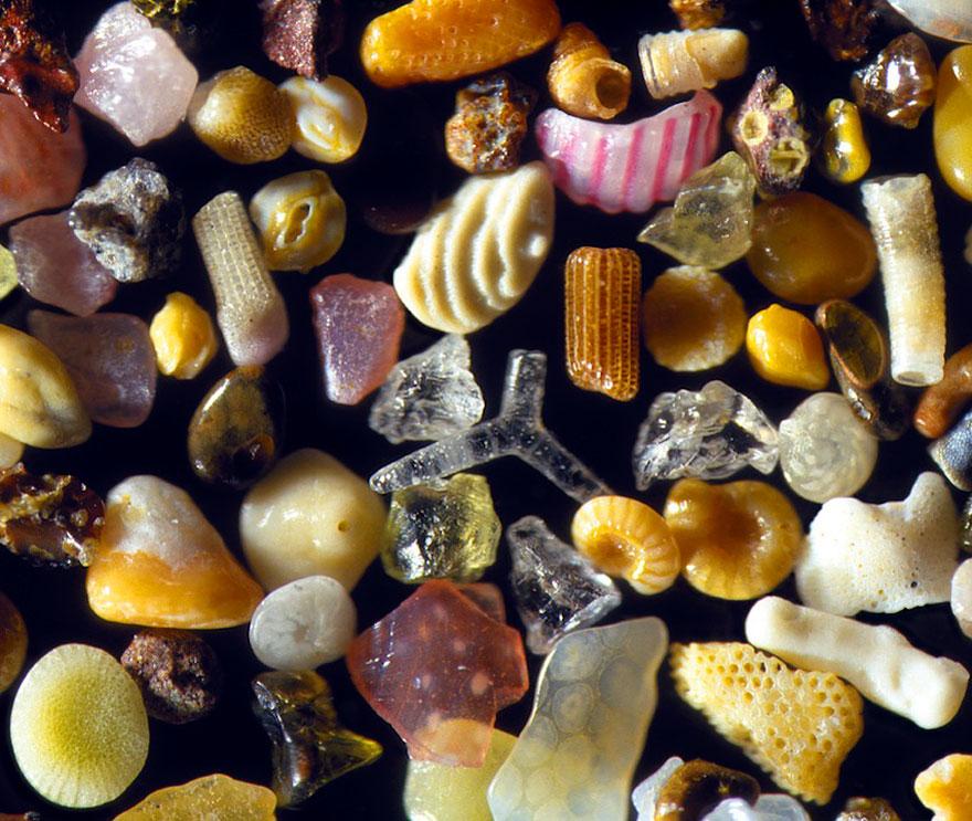 Liiv mikroskoobi all 2