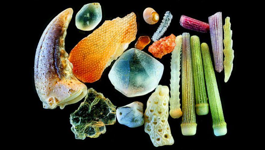 Liiv mikroskoobi all 6