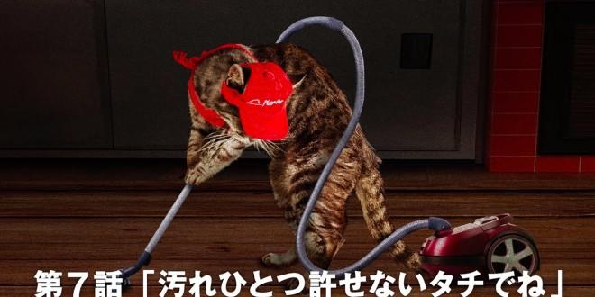 Kass, kes võeti tööle Jaapani Pizza Huti