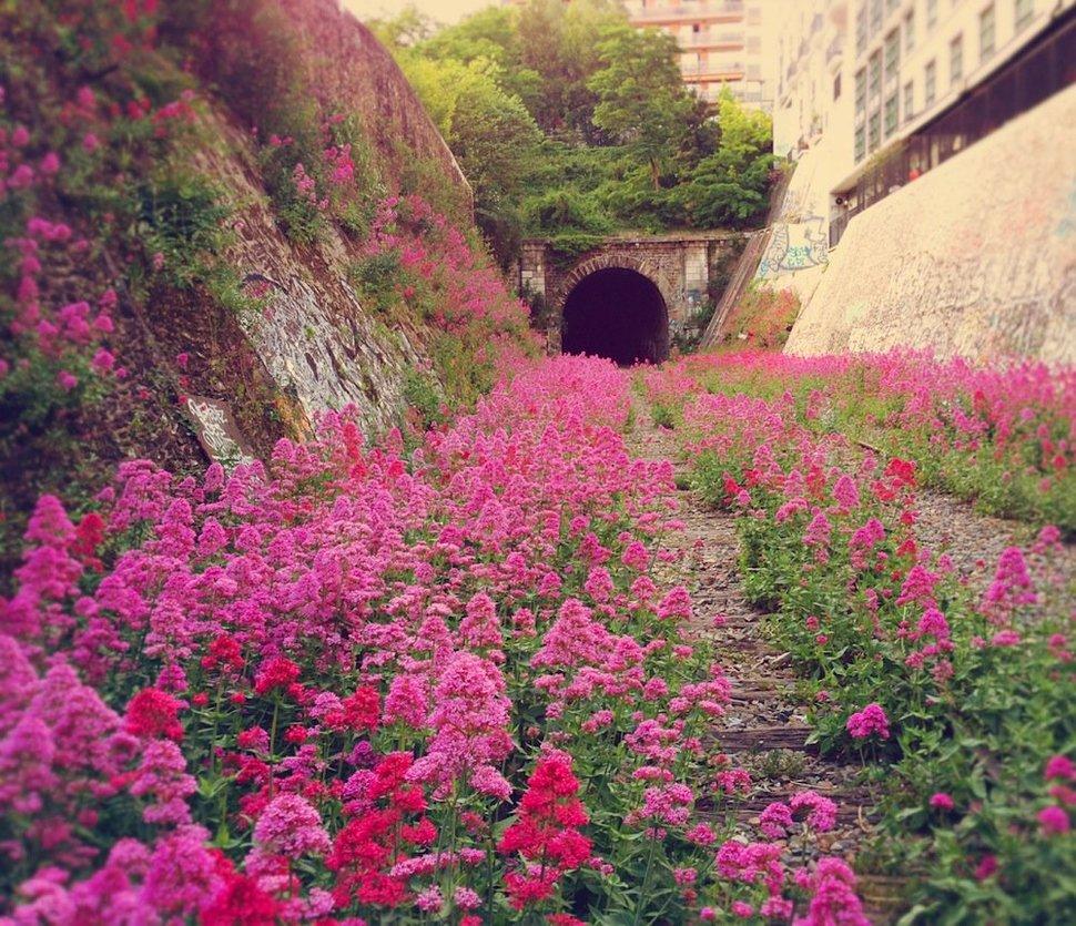 Chemin de fer de Petite Ceinture, France 2