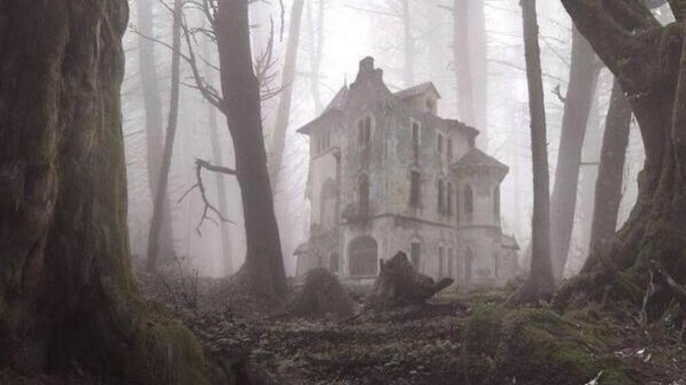 Hüljatud maja metsas