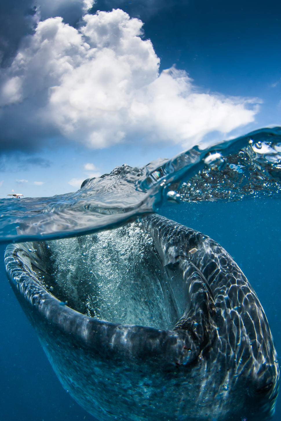 Kariibi meri, Mehhiko
