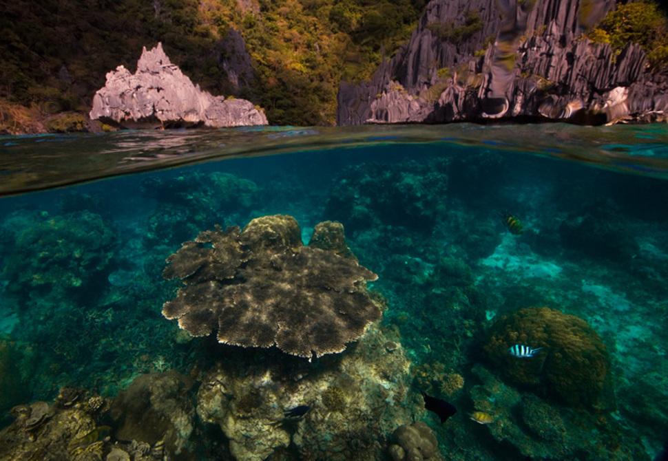 Palawani saar, Filipiinid