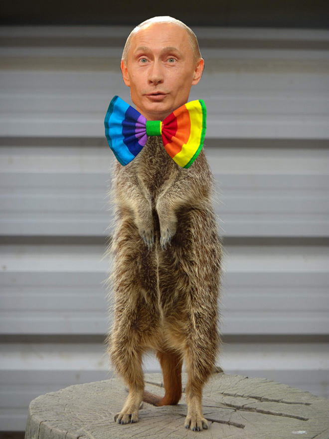 Putin 23