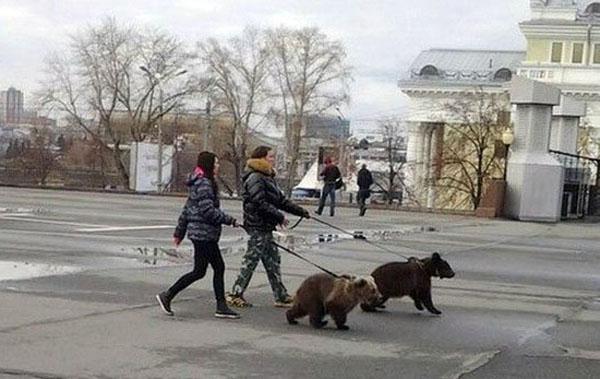 kevad Venemaal 6