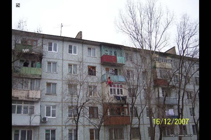 vene plank 7